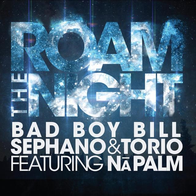 Roam the Night (feat. Na Palm)