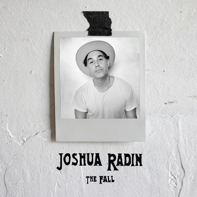 Album cover for The Fall by Joshua Radin