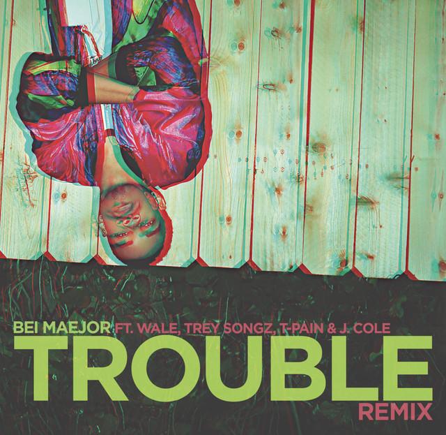 Trouble Remix (Explicit Version)