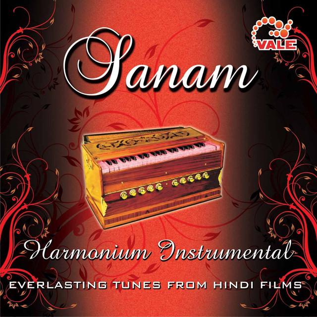 Sanam Harmonium Instrumental by Hindi Instrumental Group on