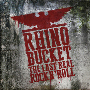 The Last Real Rock N' Roll album