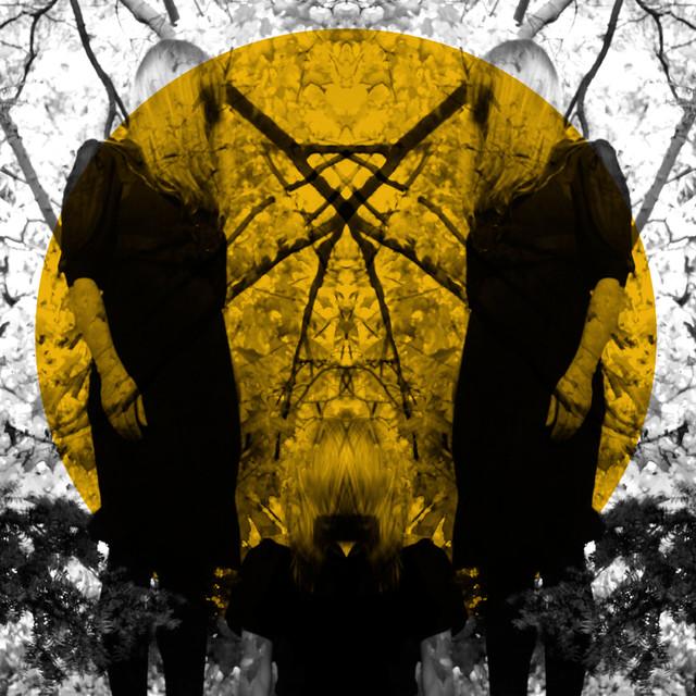 Austra Feel It Break album cover