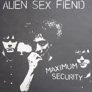 Maximum Security album