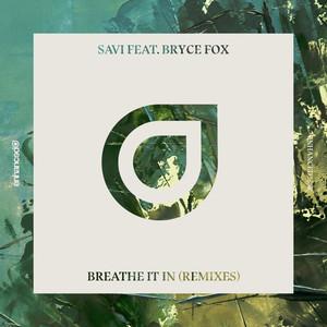 Breathe It In (Remixes)