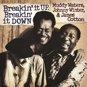 Breakin' It Up, Breakin' It Down album