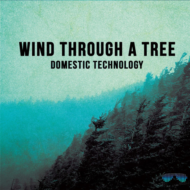 Album cover for Wind Through a Tree by Domestic Technology