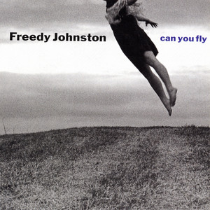 Can You Fly album