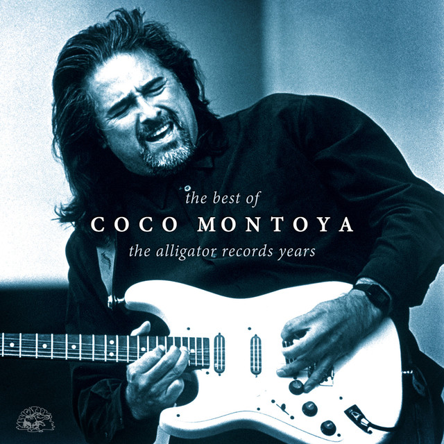 Coco Montoya The Best Of Coco Montoya - The Alligator Records Years album cover