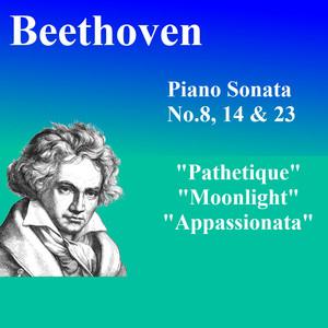 ピアノソナタ Albümü