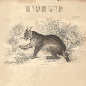 Carry On - Willy Mason