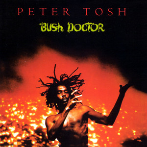 Bush Doctor album