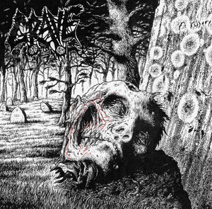 Necropsy - The Complete Demo Recordings 1986-1991 album