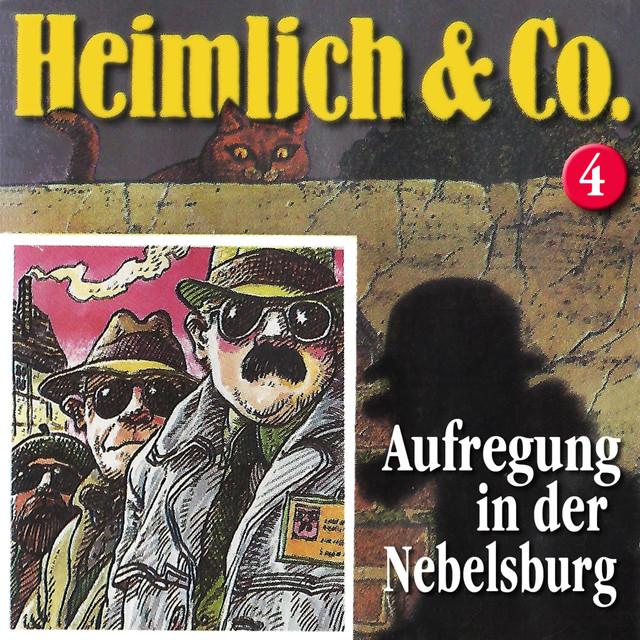 Folge 04: Aufregung in der Nebelsburg Cover