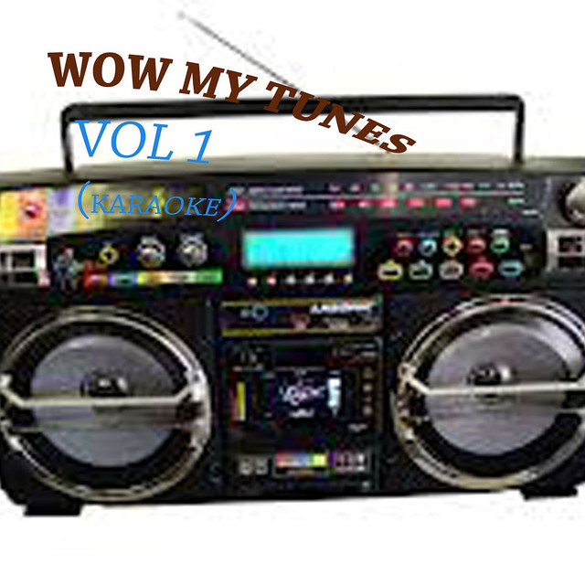 WOW MY TUNES VOL 1 (KARAOKE) by Karaoke on Spotify