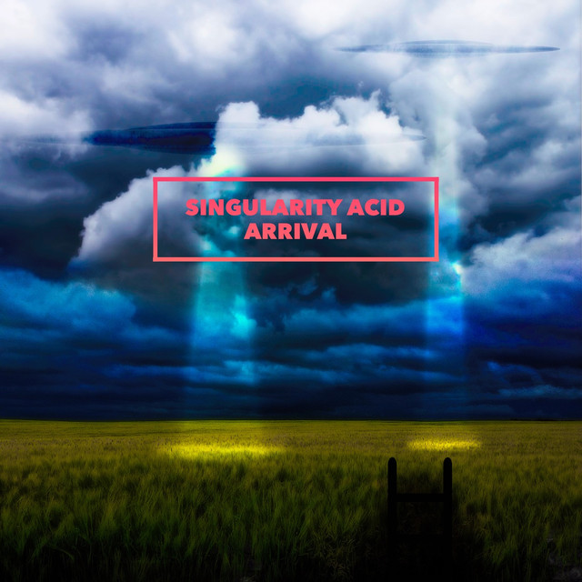 Singularity Vol. 1 (Acid Arrival)