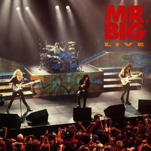 Mr. Big Live album