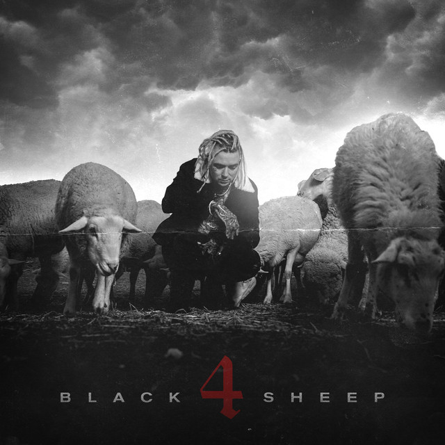 Black Sheep 4