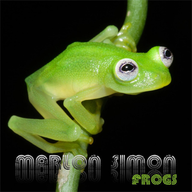 Album cover for Frogs by Marlon Simon