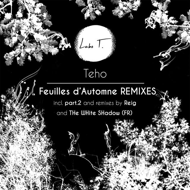Feuilles d'automne Remixes