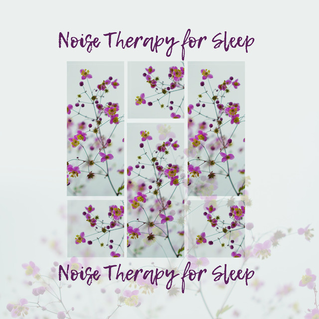 38 Noise Therapy for Sleep