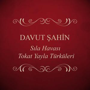 Davut Şahin