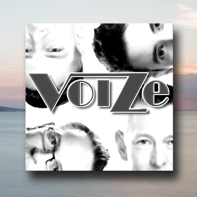 Voize