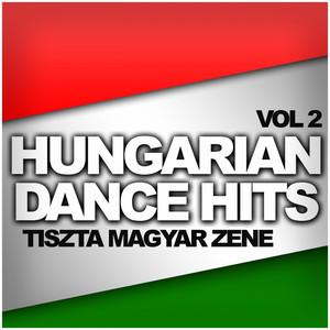 Hungarian Dance Hits: Tiszta Magyar Zene, Vol. 2 Albumcover