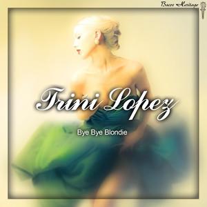 Bye Bye Blondie album