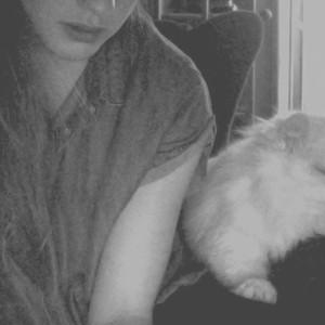 Cashmere Cat, Mirror Maru på Spotify