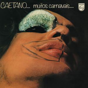 Muitos Carnavais album