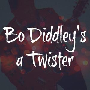 Bo Diddley's a Twister album