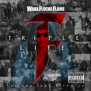 Triple F Life: Friends, Fans & Family Albumcover