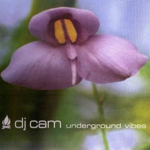 Underground Vibes Albumcover