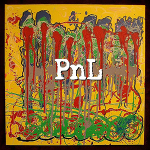 Picture of PNL