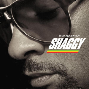 The Best of Shaggy album