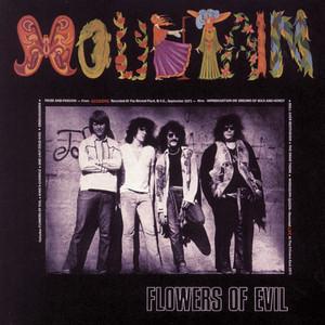 Flowers of Evil album