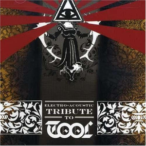 Electro-acoustic Tribute To Tool,the - Tool