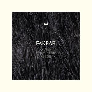 Silver (Bakradze Remix) Albümü