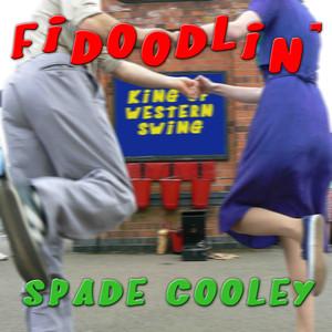 Fidoodlin' album