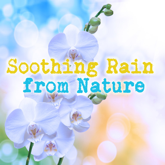 Soothing Rain from Nature Albumcover