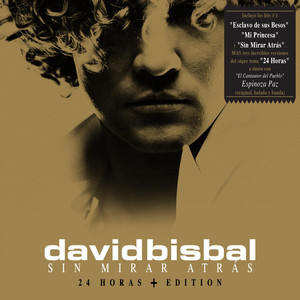 David Bisbal Mi princesa cover