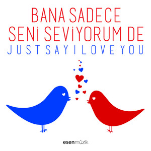 Just Say I Love You / Bana Sadece Seni Seviyorum De