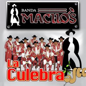 La Culebra album