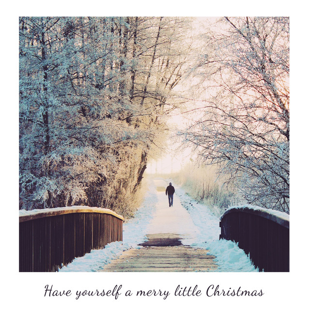 Have Yourself A Merry Little Christmas (Piano Acoustic)