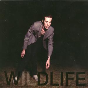 Wildlife album