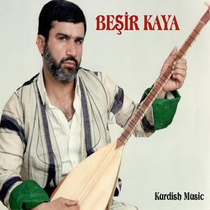 Kürtçe Türküler Albümü