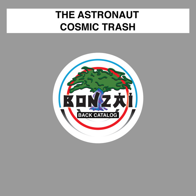 Cosmic Trash