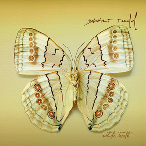 White Moth - Xavier Rudd