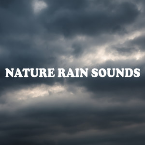 Nature Rain Sounds Albumcover