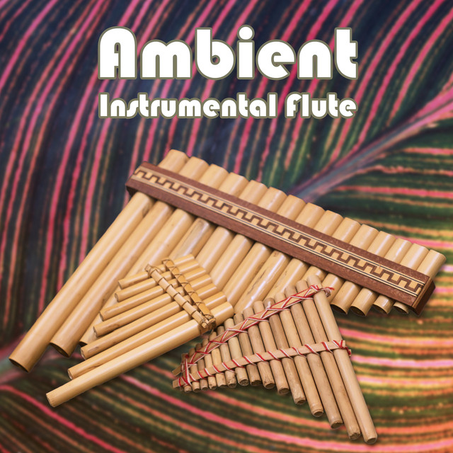 Ambient Instrumental Flute, Classical Soothing, Shamanic Healing, Rest Melodies, Wellbeing, Meditation, Yoga, Ayurveda & Sleeping